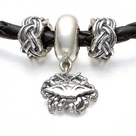 pandora canada cancer sterling silver charms stylecaster